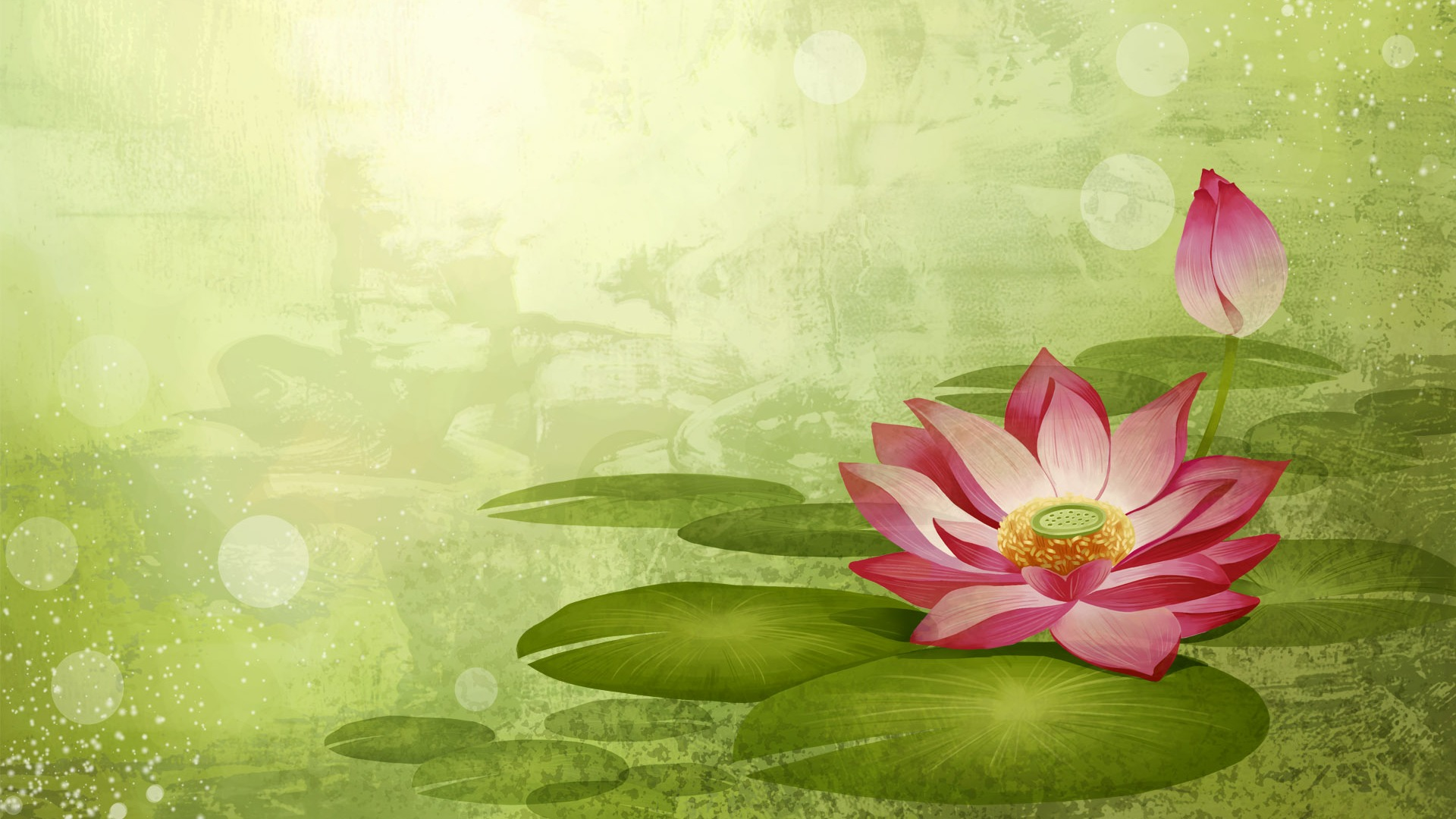 Wallpaper Lotus Flower Design