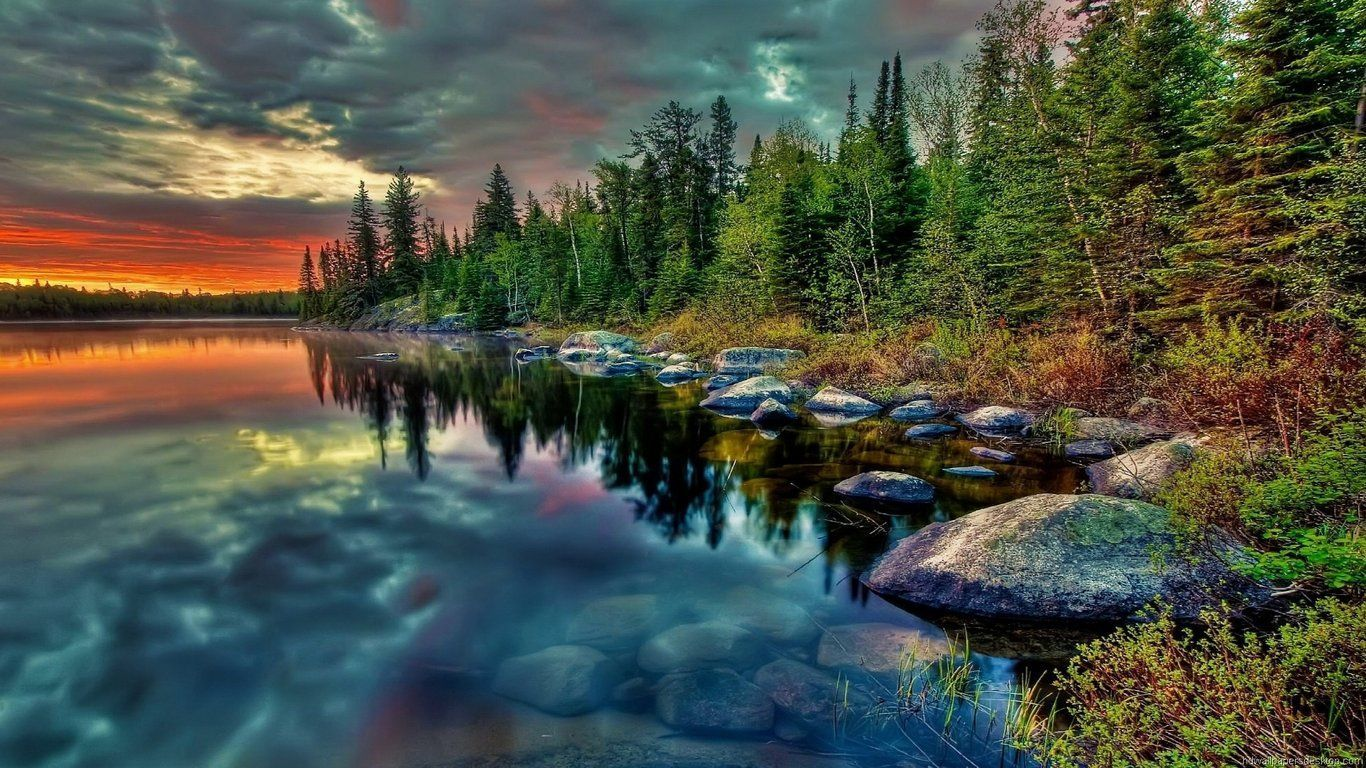 Wallpaper Natur