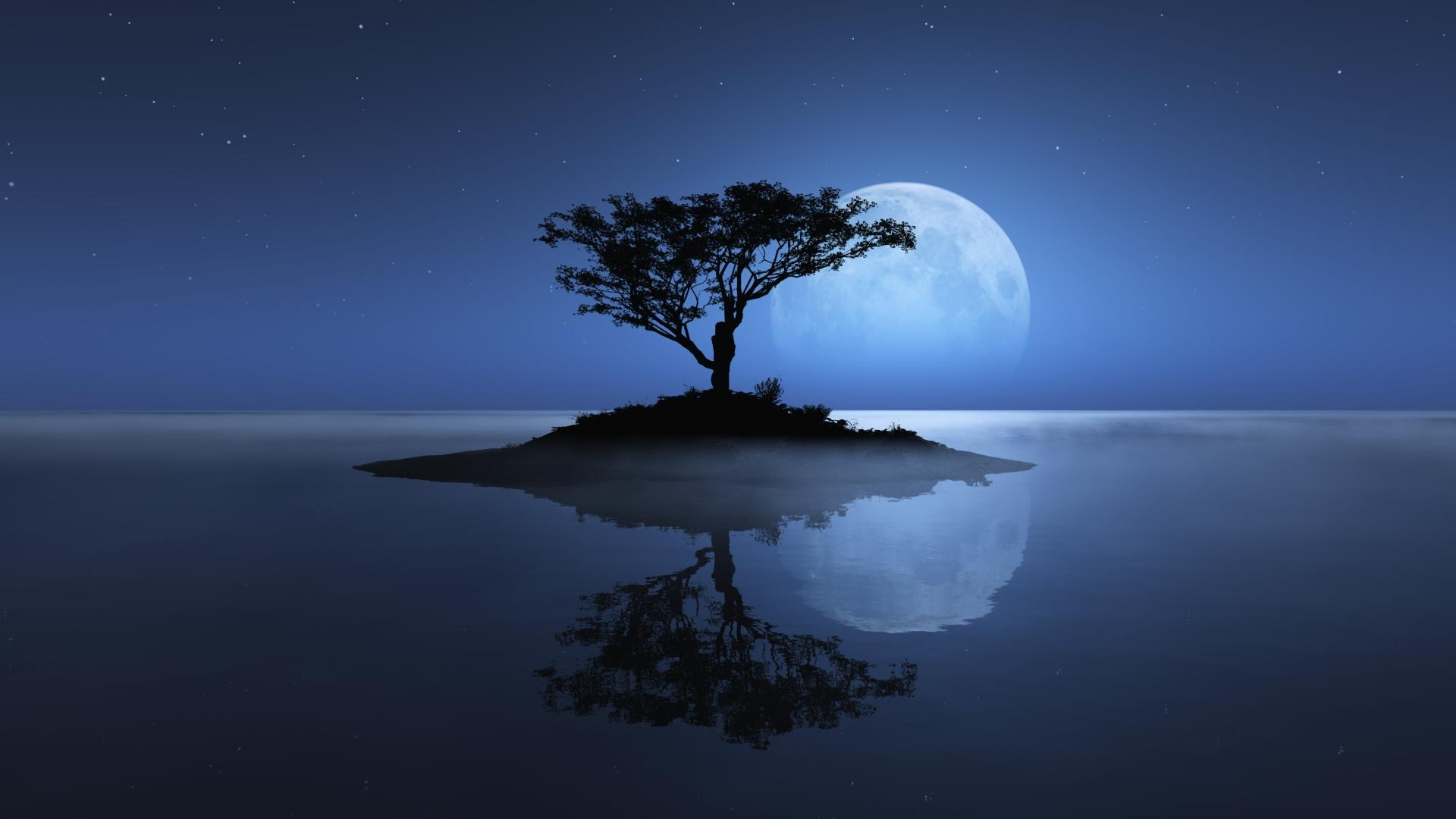 Wallpaper Nature Night