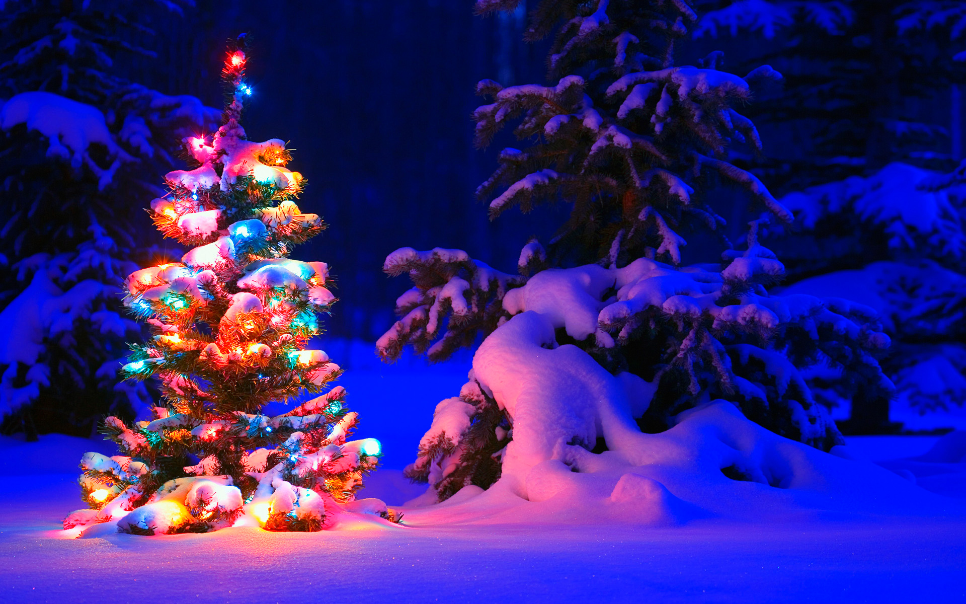 Wallpaper Of Christmas