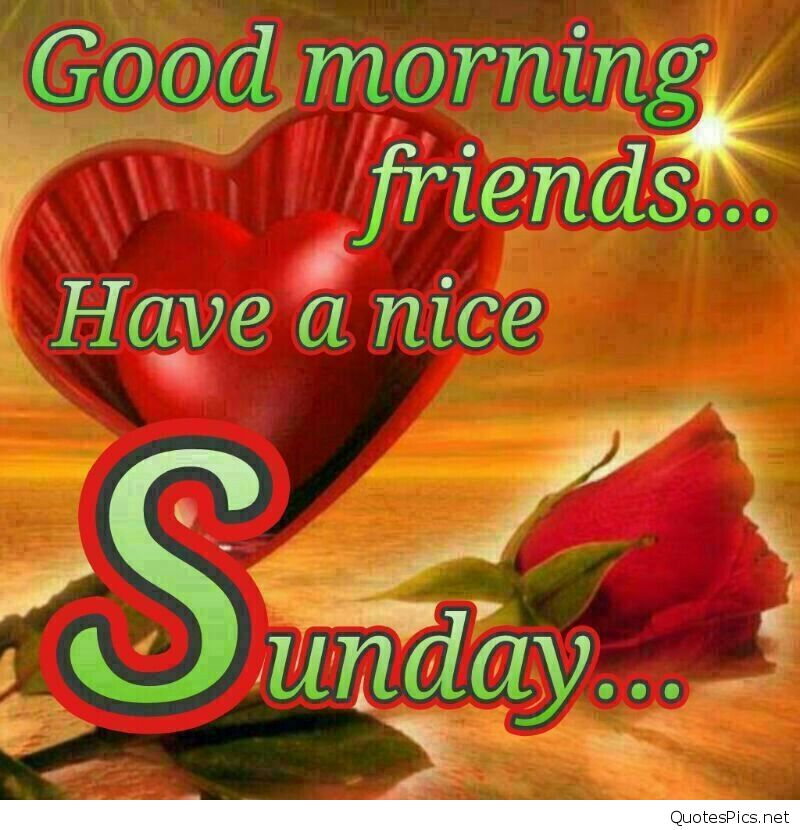 Download Wallpaper Of Good Morning Friends Gallery