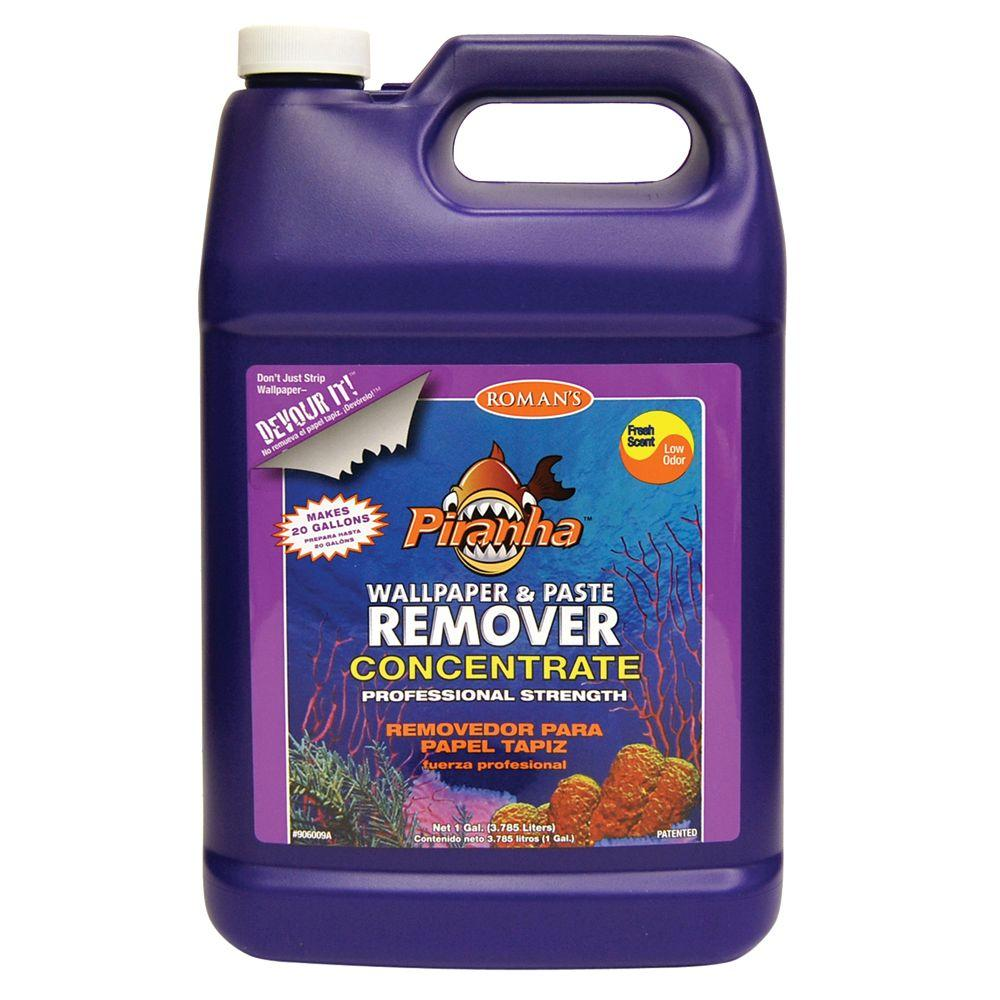 Wallpaper Remover Home Depot