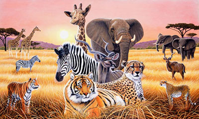Wallpaper Safari Animals