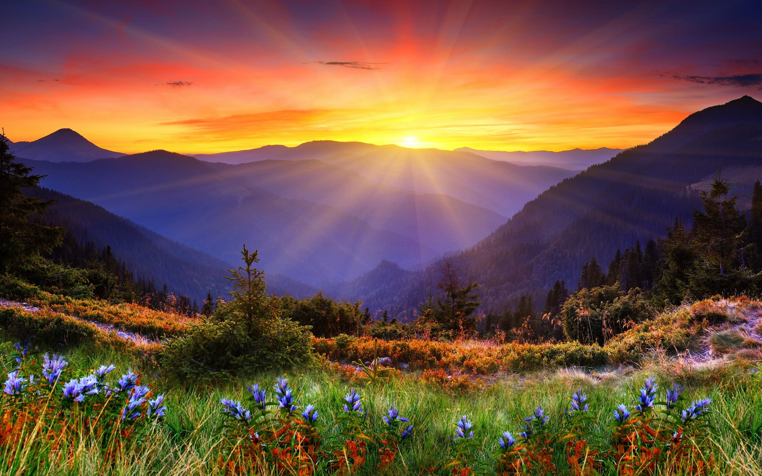 Wallpaper Scenic Pictures