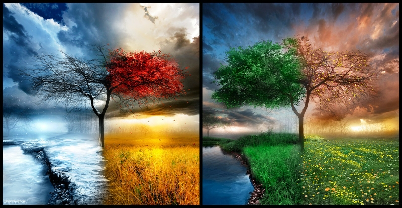 Wallpaper Seasons