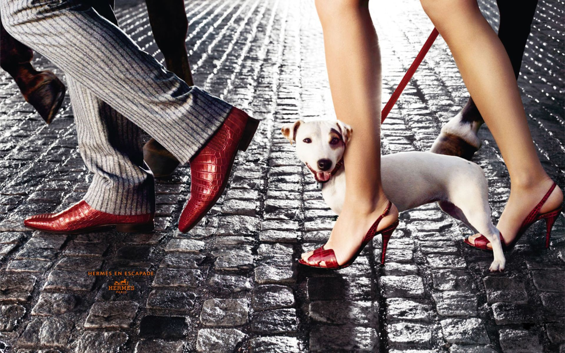 Download Wallpaper Shoes Fashion Gallery