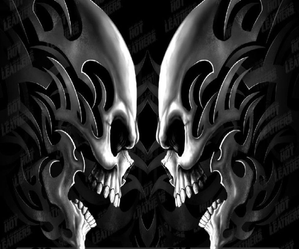 Wallpaper Skull Download