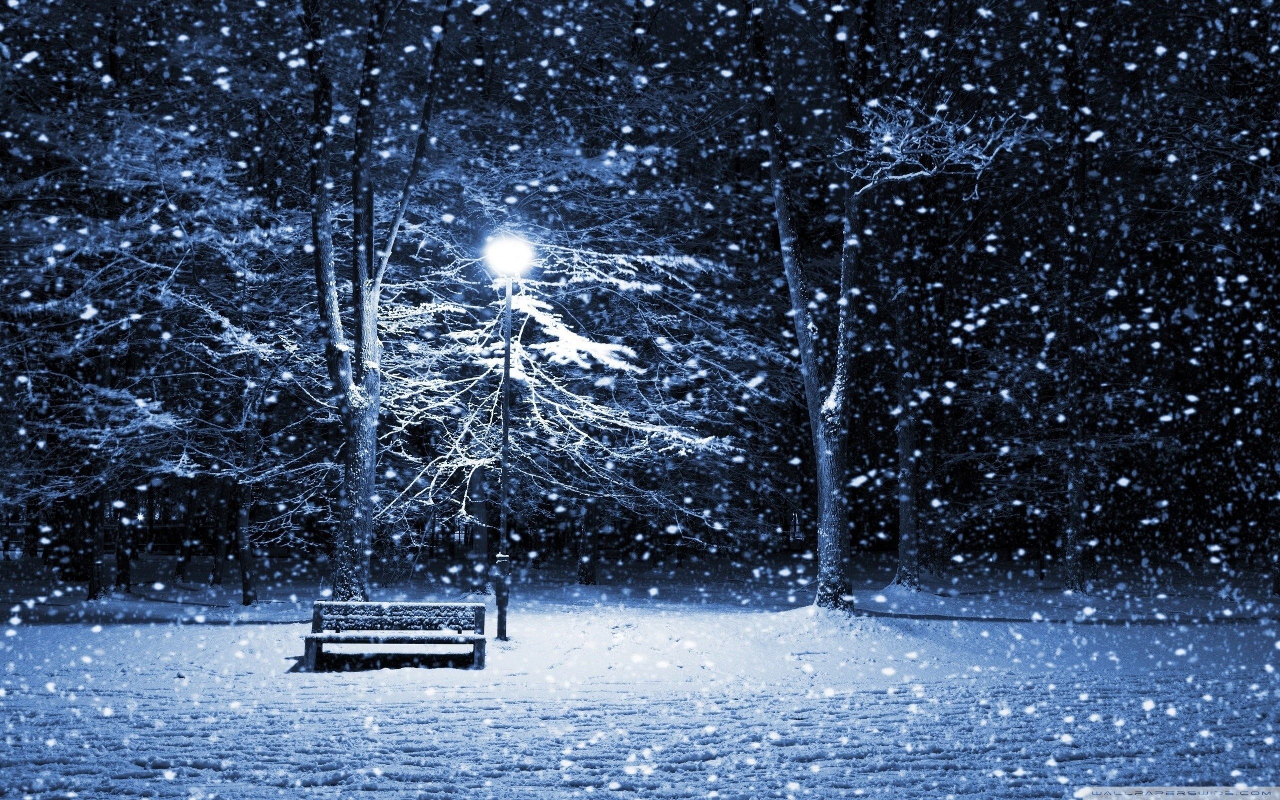 Wallpaper Snowing