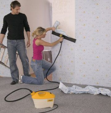Wallpaper Steamers For Sale