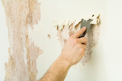 Wallpaper Stripping Service