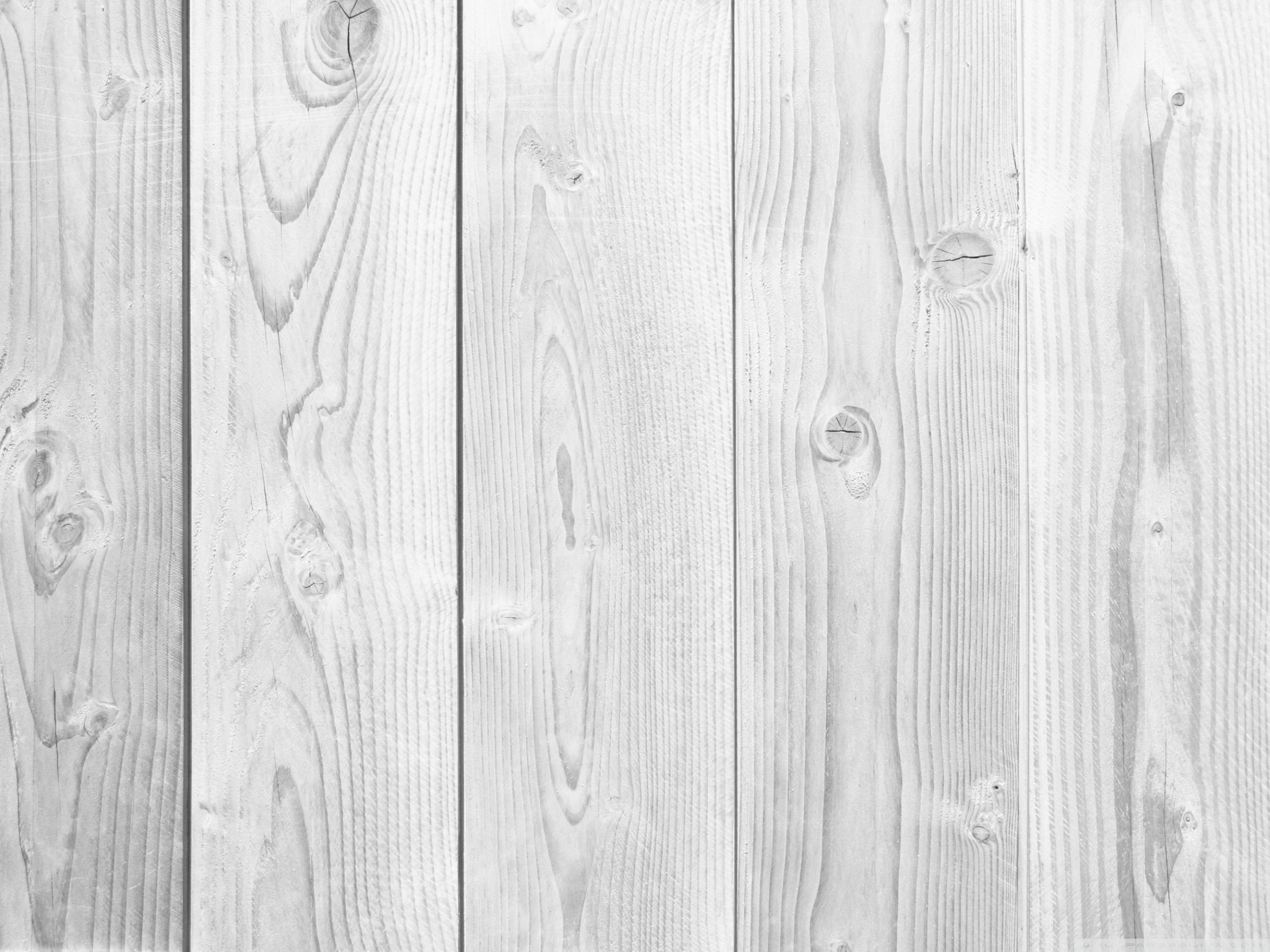Wallpaper White Wood