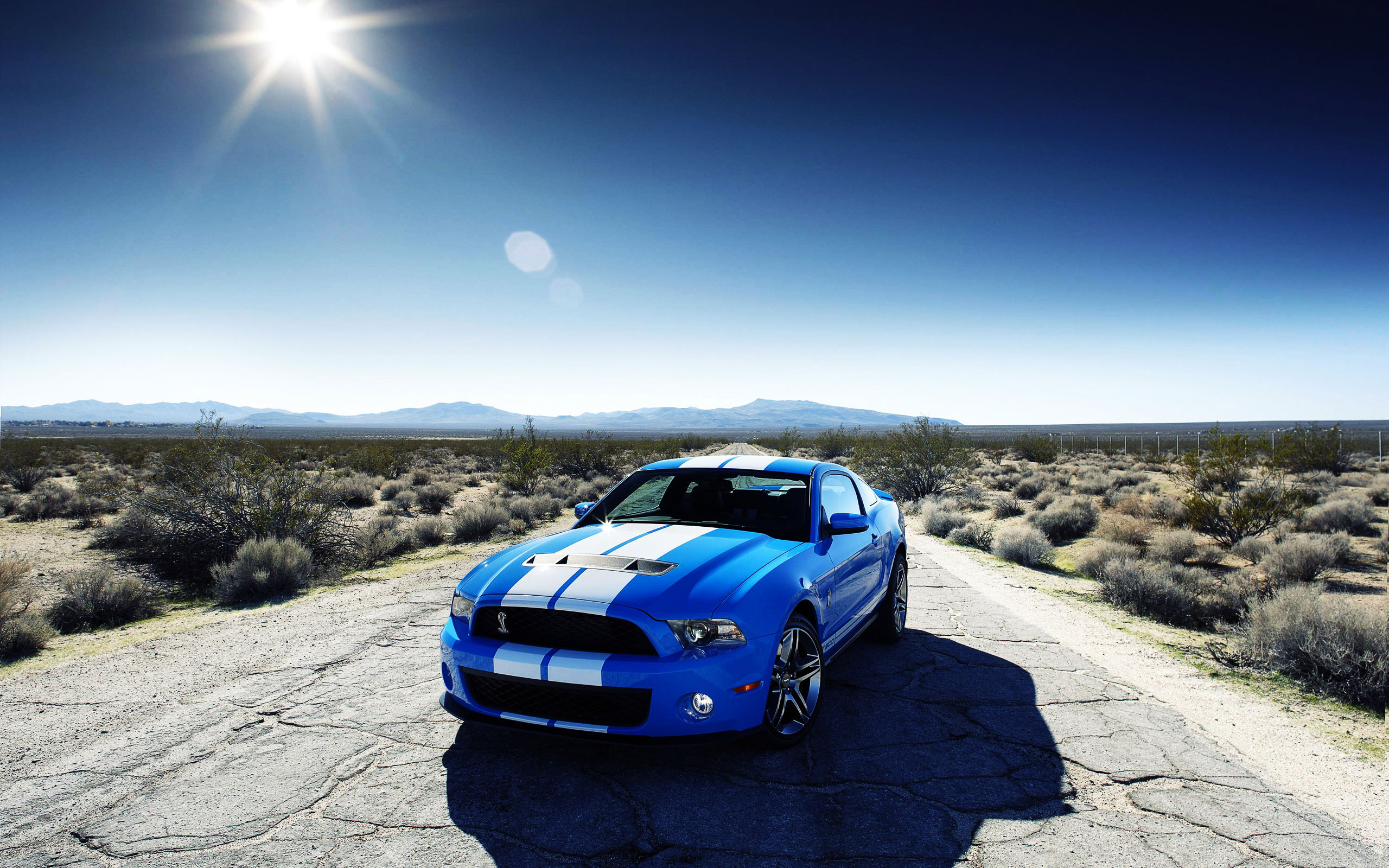 Wallpapers HD Cars