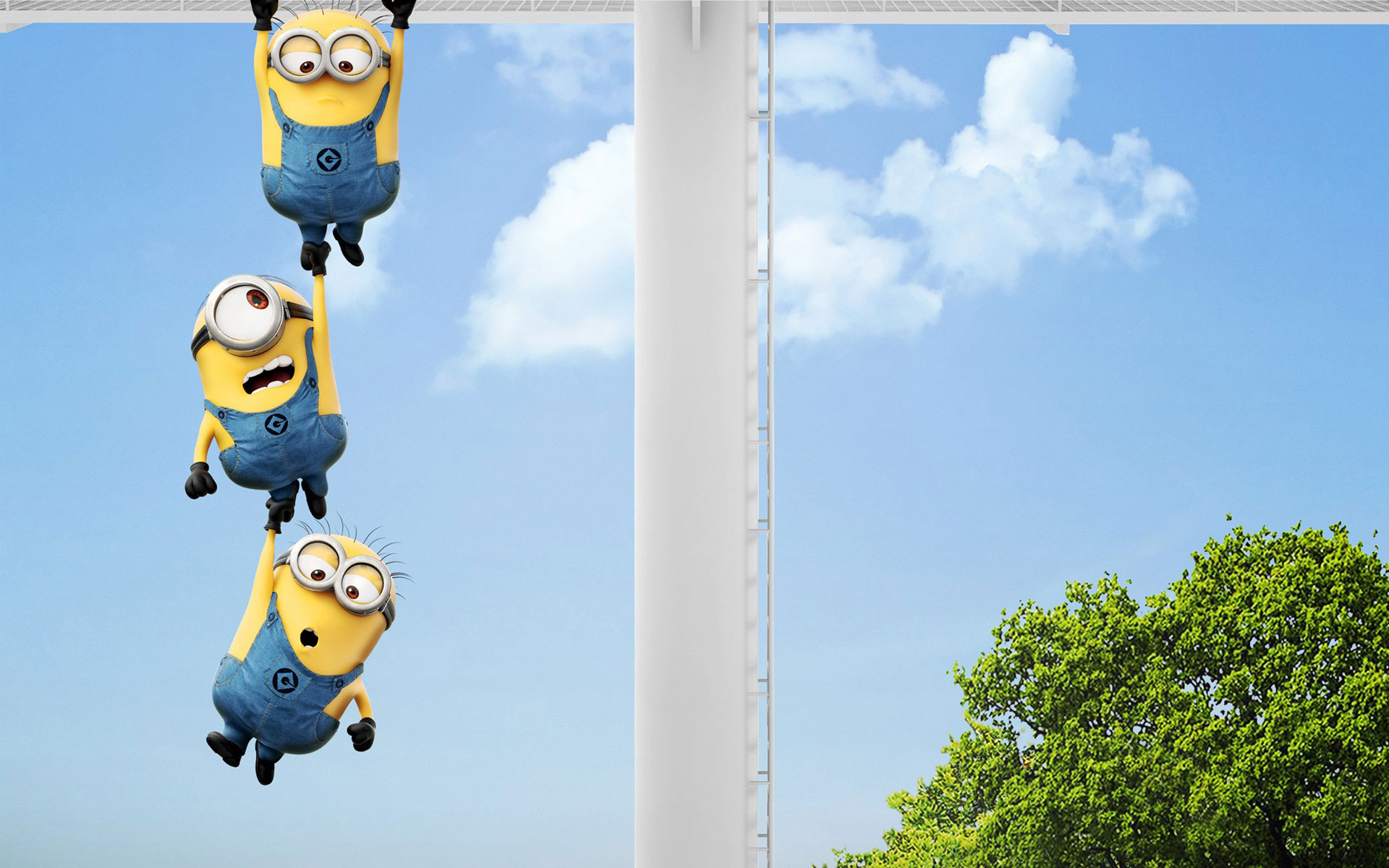 Wallpapers Minion