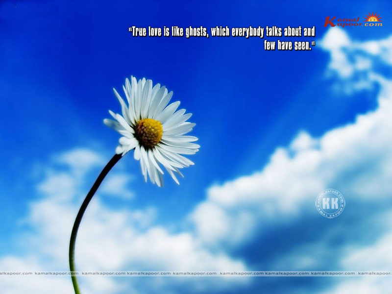 Wallpapers With Quotation