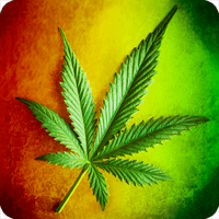 Weed Wallpaper For Android