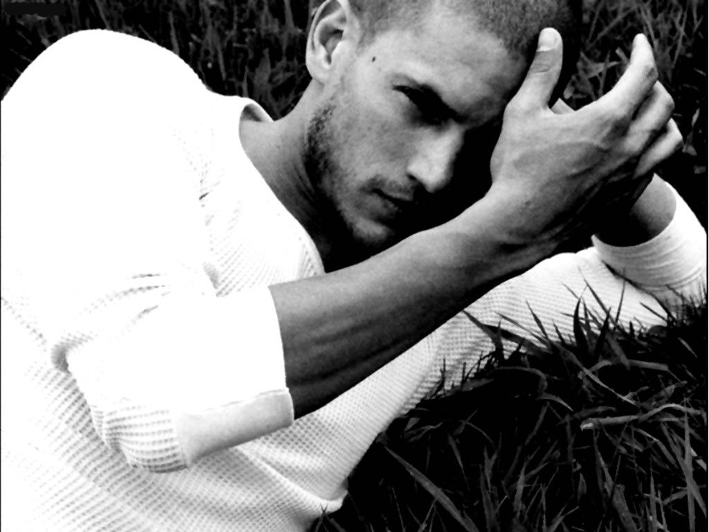 Download Wentworth Miller Wallpapers Gallery