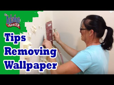Where To Rent A Steamer To Remove Wallpaper