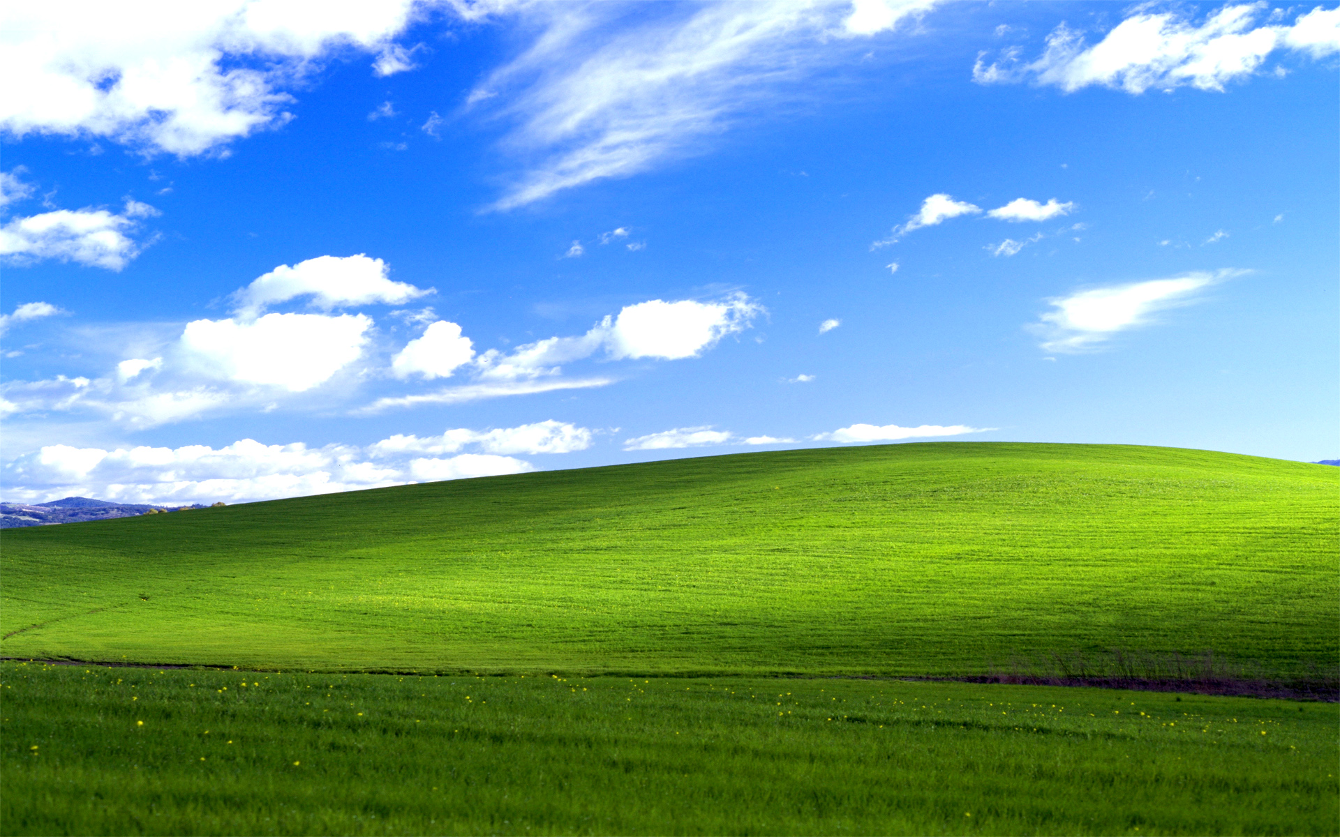 Windows Grass Wallpaper