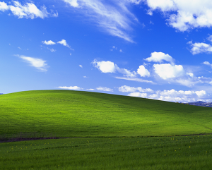 Windows Wallpaper Field