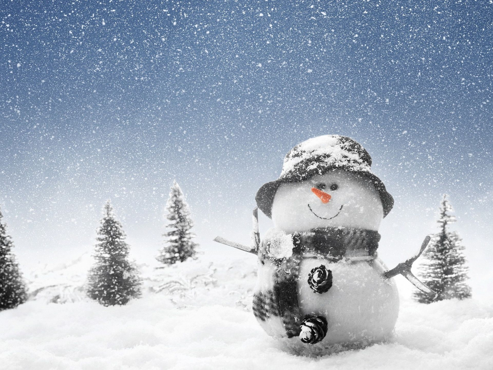 Winter Funny Wallpaper