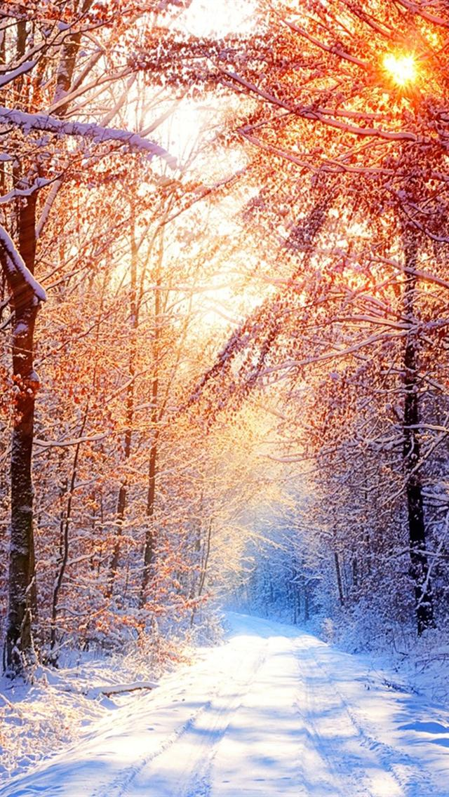 Winter Iphone 5 Wallpaper