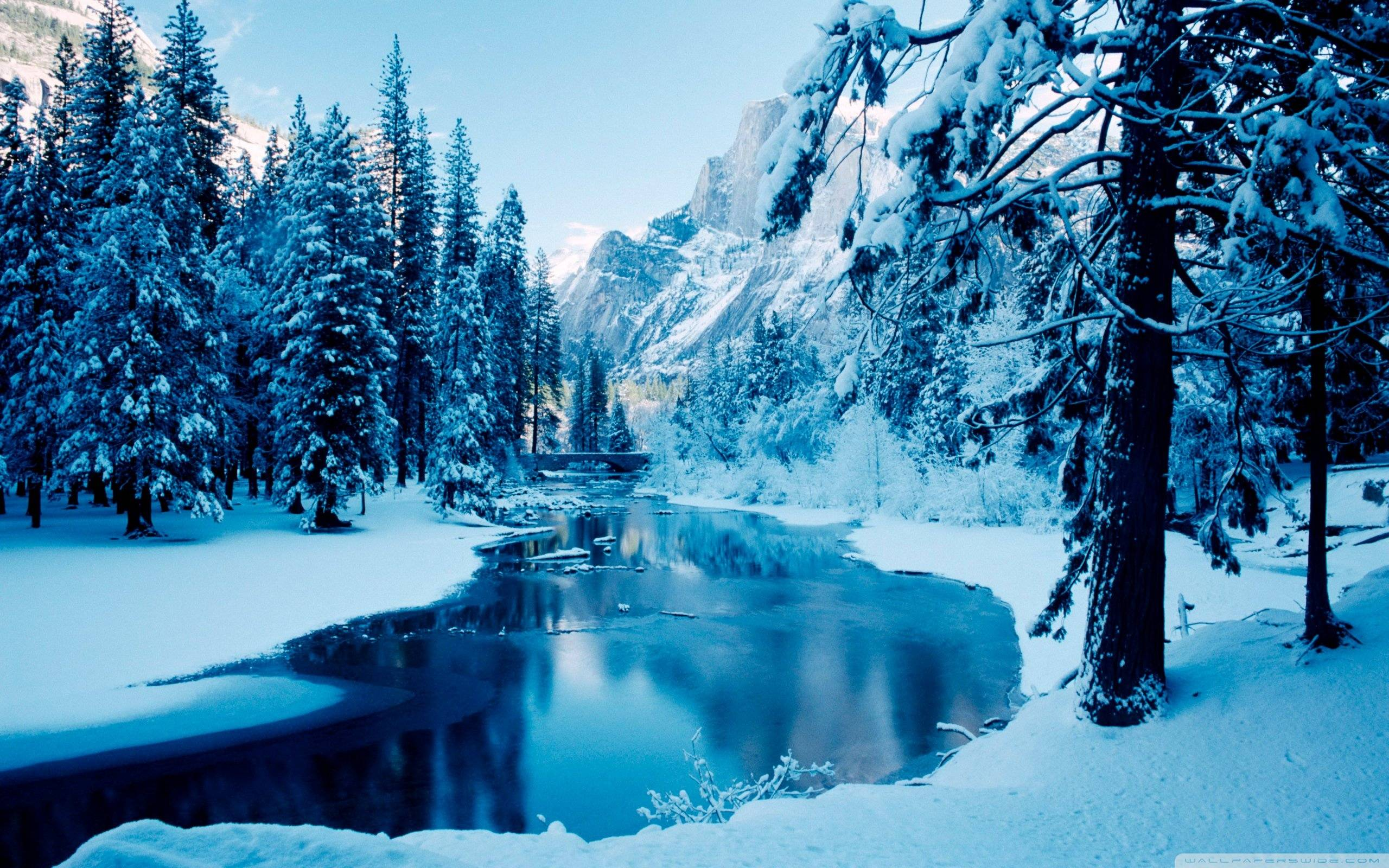 Winter Landscape Wallpaper