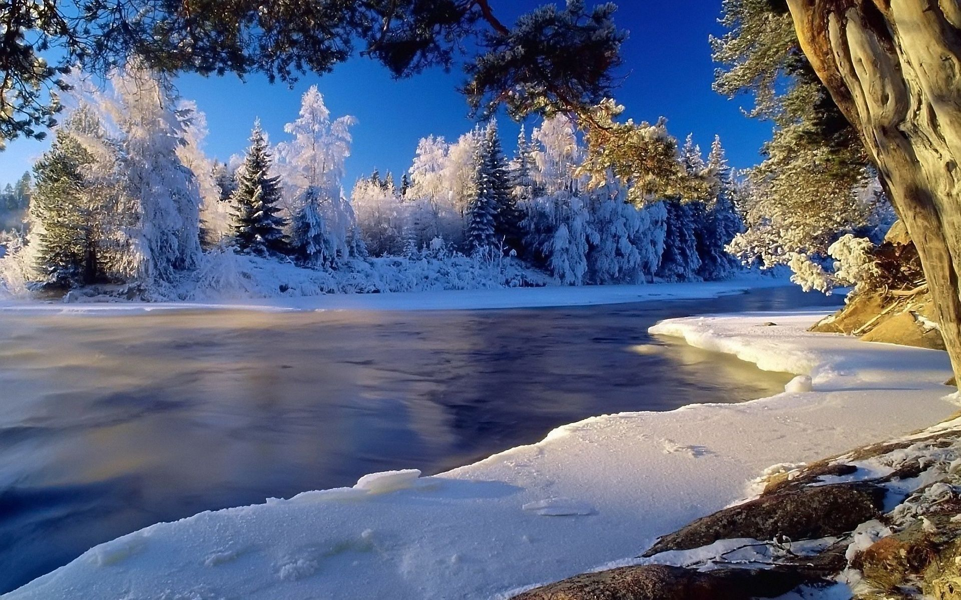 Winter Landscape Wallpapers