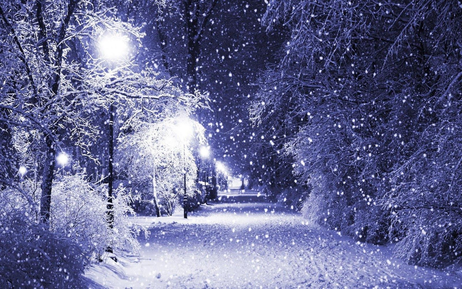 Winter Scene Wallpaper Free