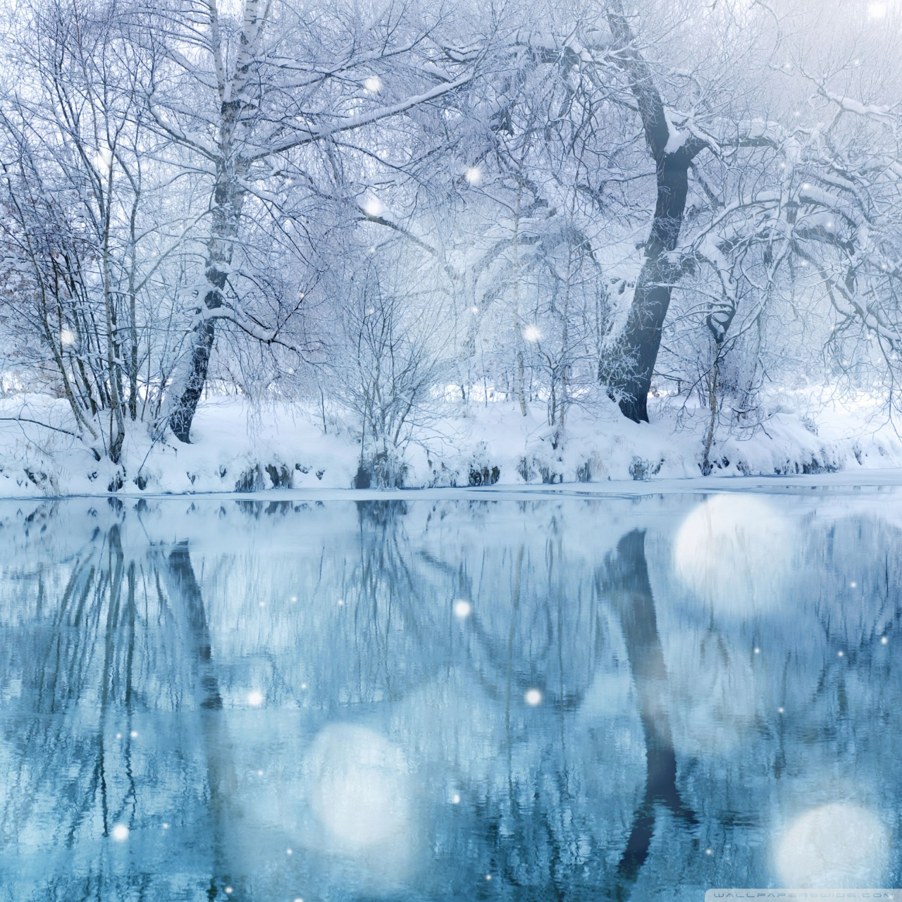 Winter Wallpaper For Android