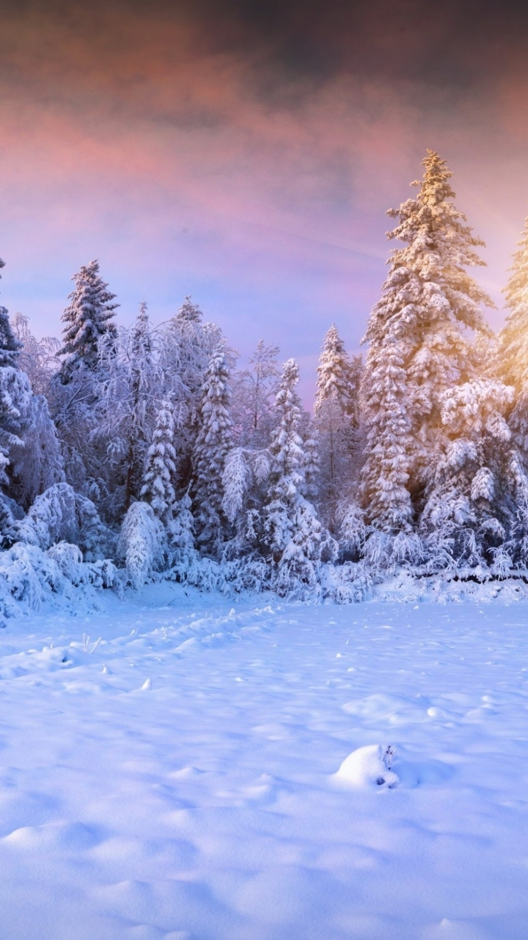 Download Winter Wallpaper Iphone Gallery