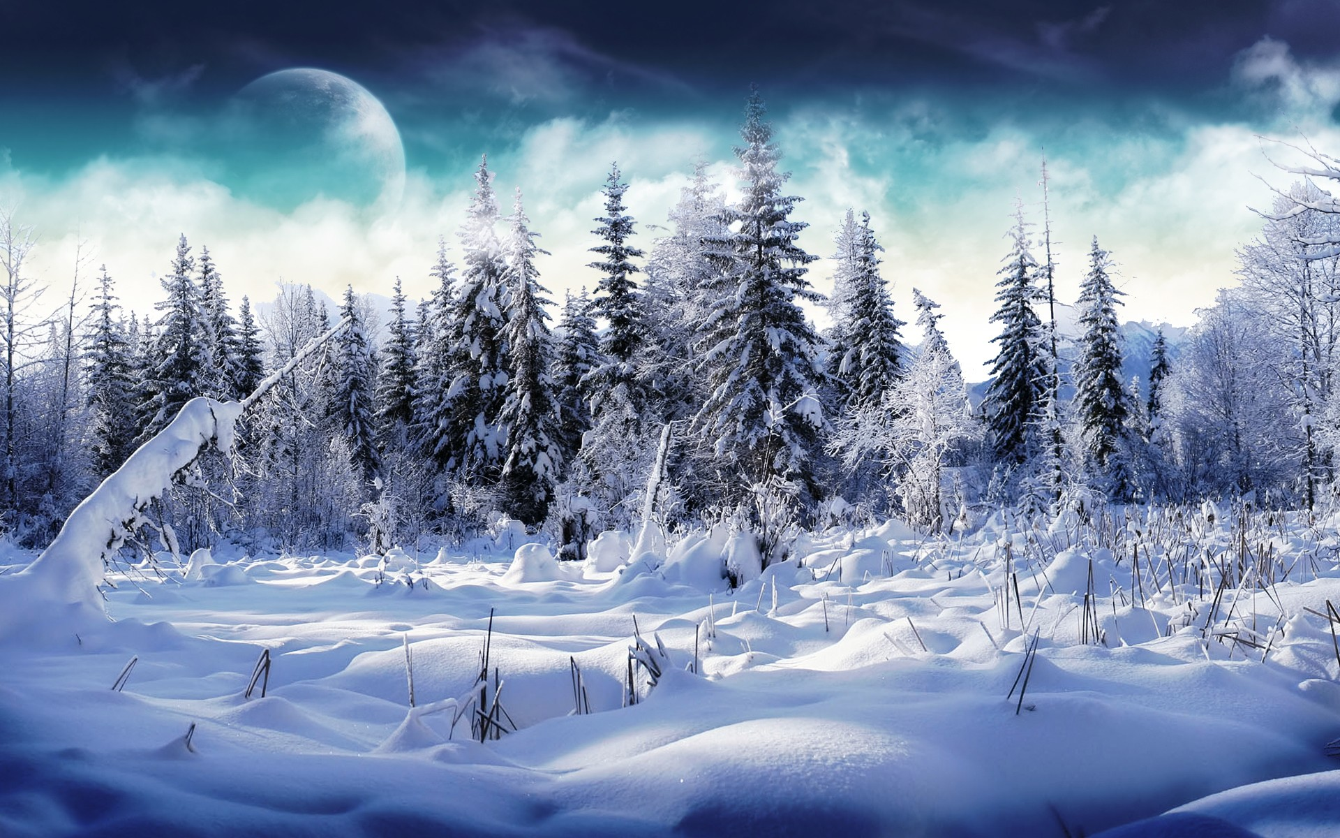 Winters Wallpapers