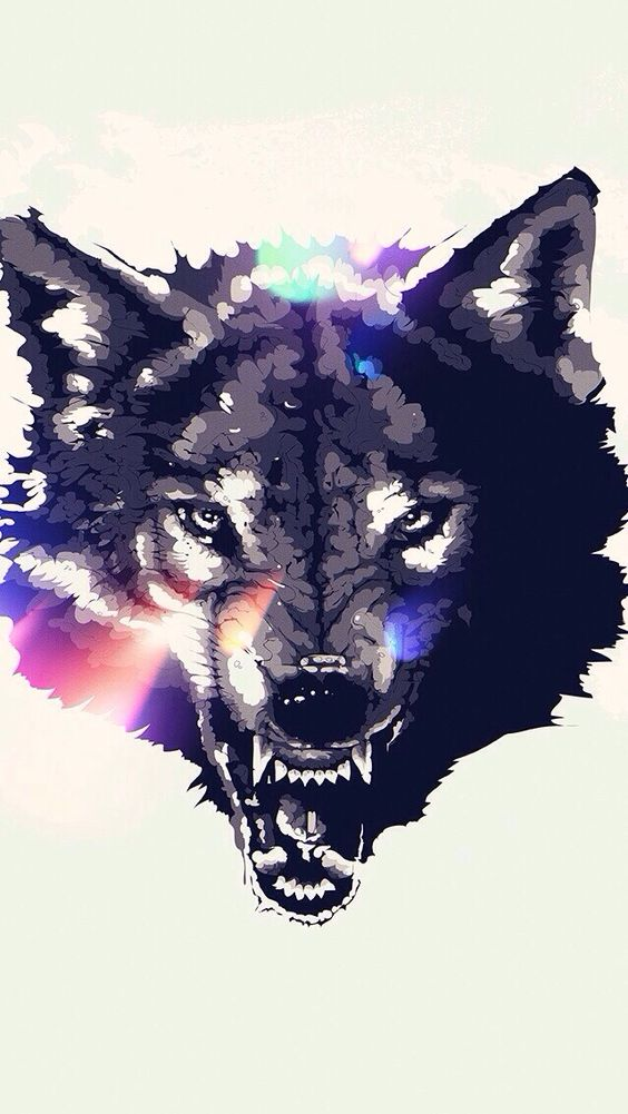 Wolf Wallpaper Iphone
