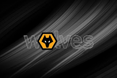 download wolverhampton wanderers wallpapers free gallery