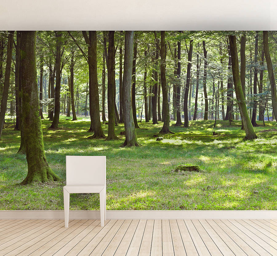 Woodland Wallpaper For Walls