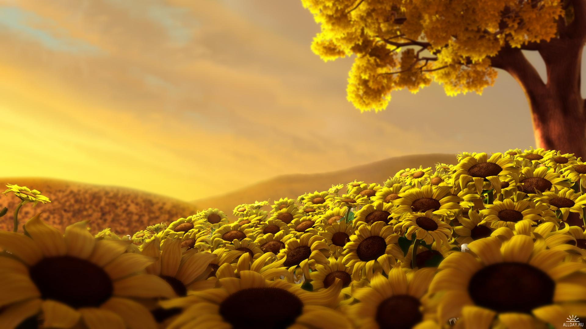 Yellow Nature Wallpaper