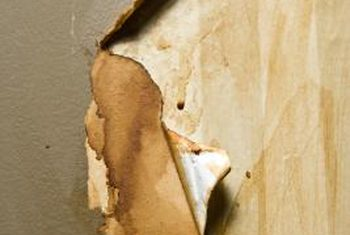 How To Prepare Walls For Painting After Removing Wallpaper