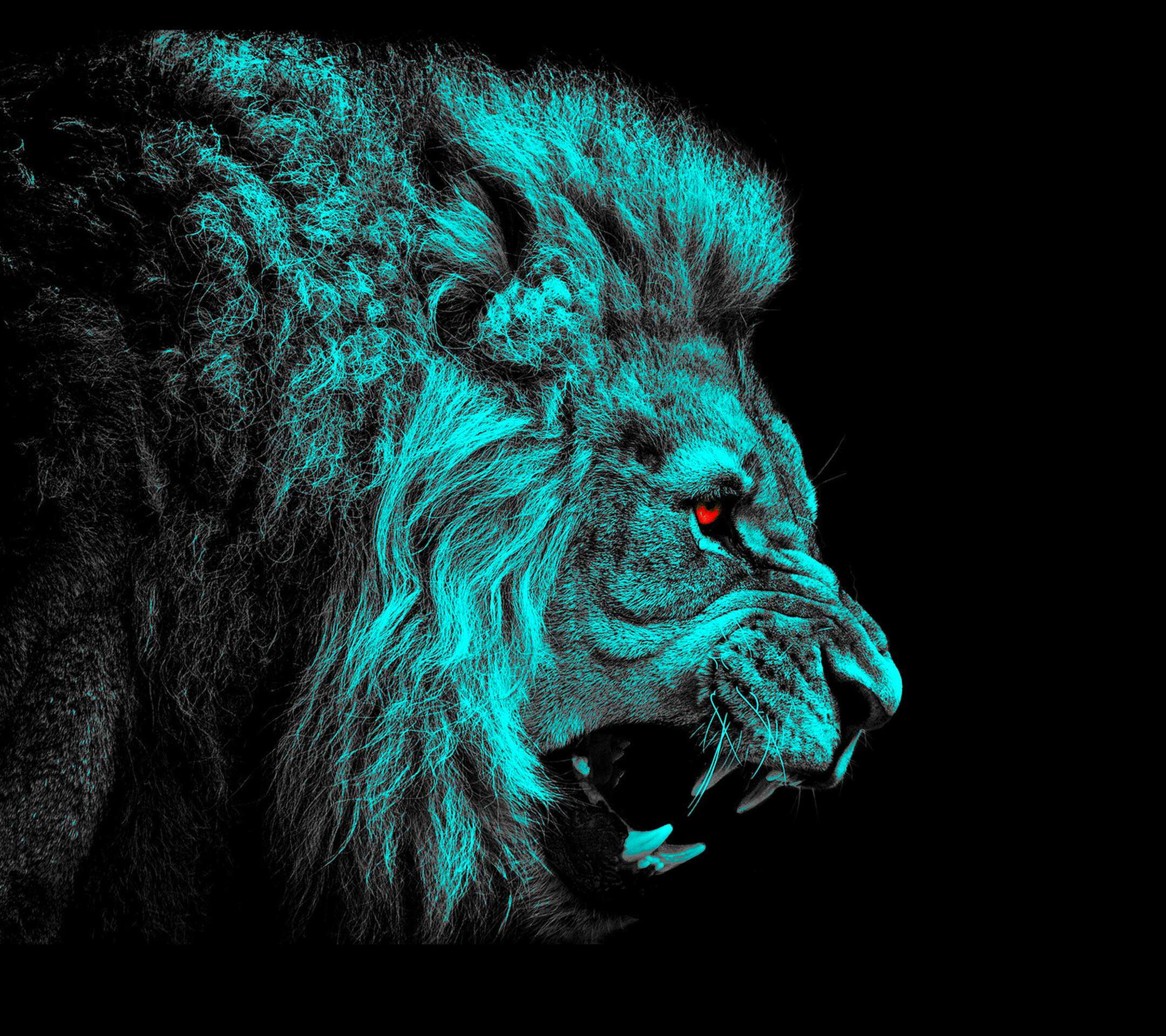 Lion Desktop Wallpaper