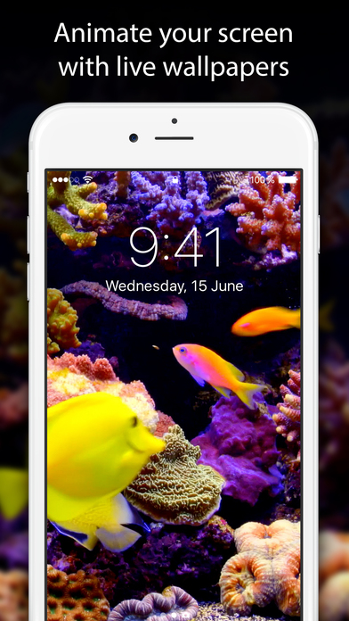 Live Wallpapers And Themes