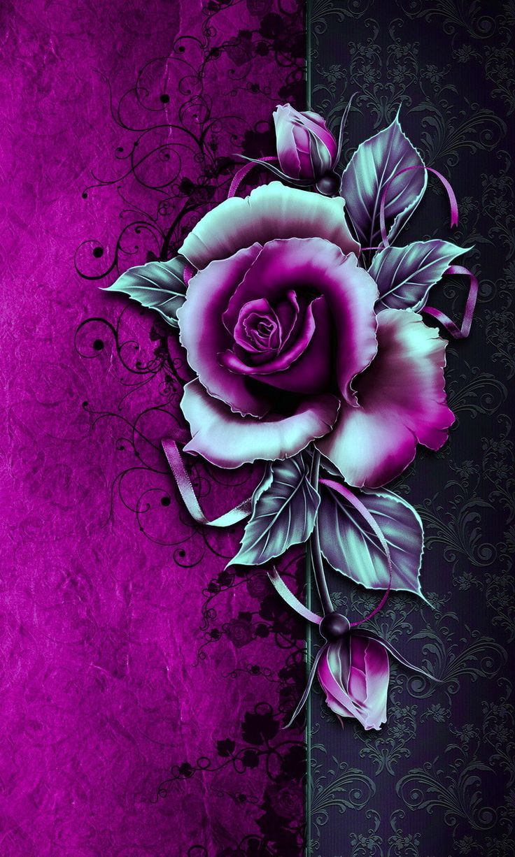 Rose Wallpaper For Phone