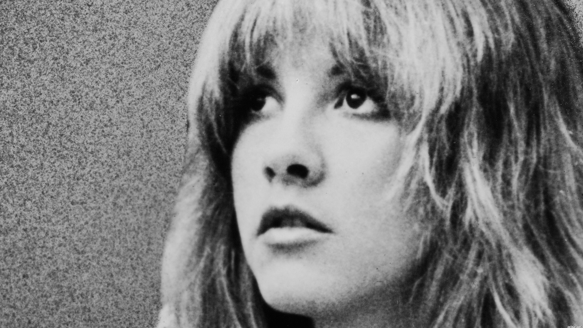 Download Stevie Nicks Wallpaper Gallery