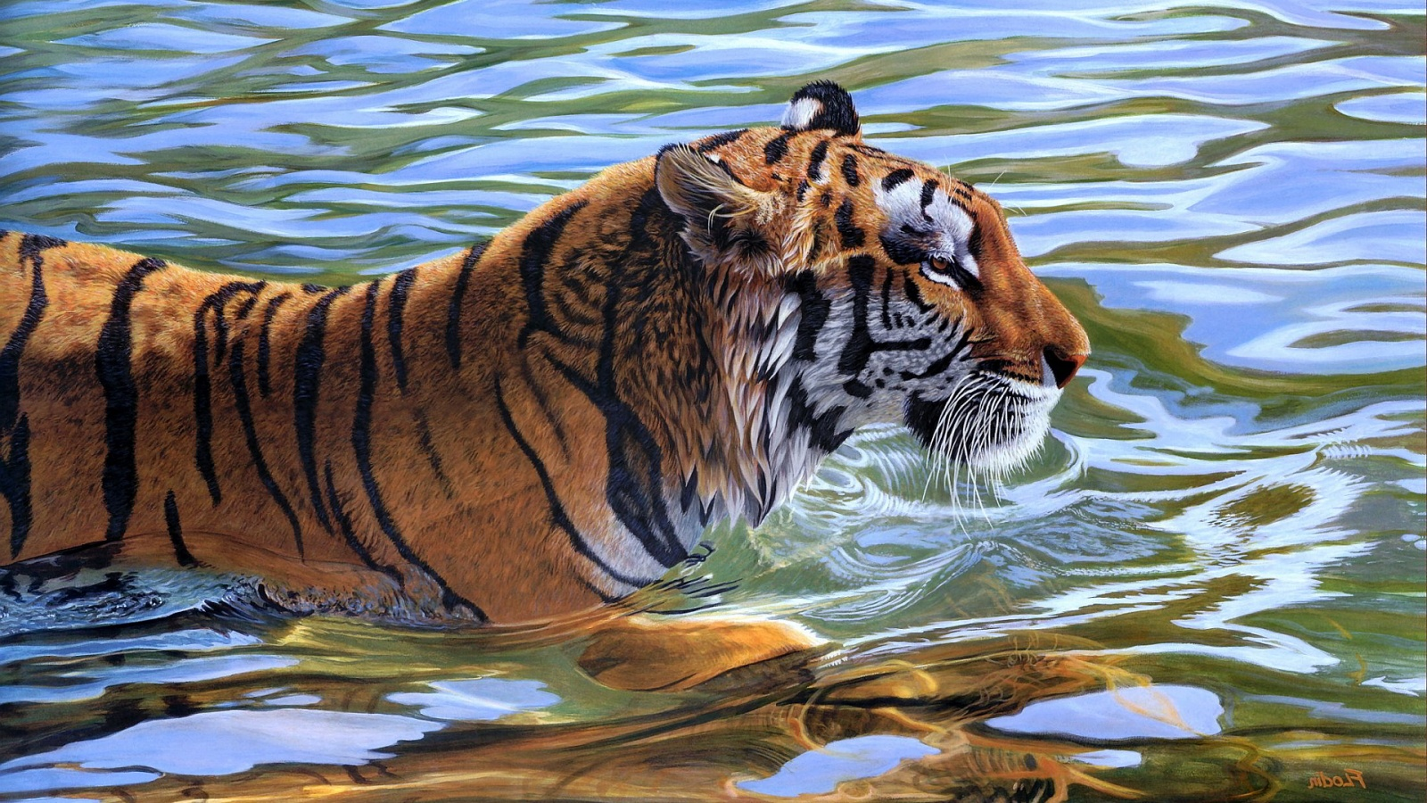 download tiger in water hd wallpaper gallery