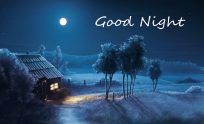 Beautiful Good Night Wallpapers