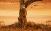 Fantastic Mr Fox Wallpapers