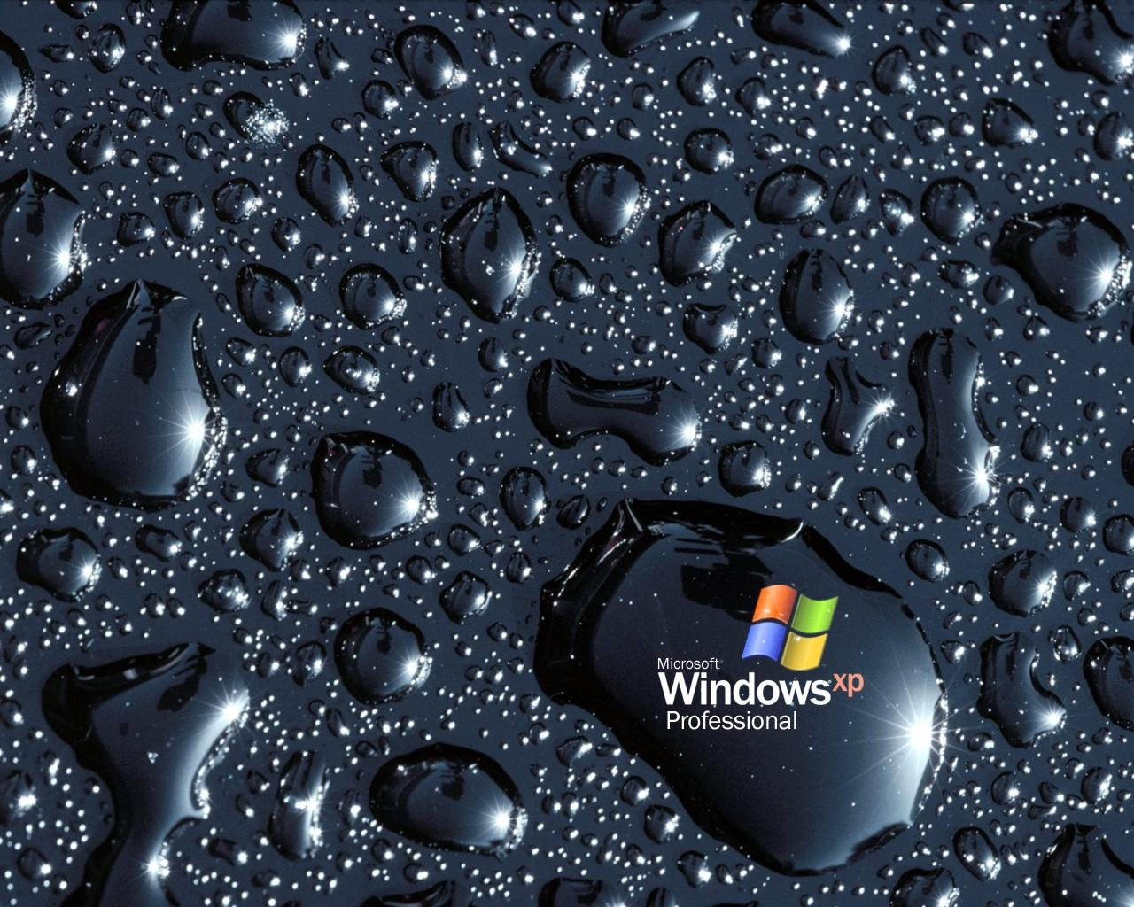 Free MSN Wallpapers And Themes
