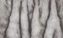 Fur Wallpapers