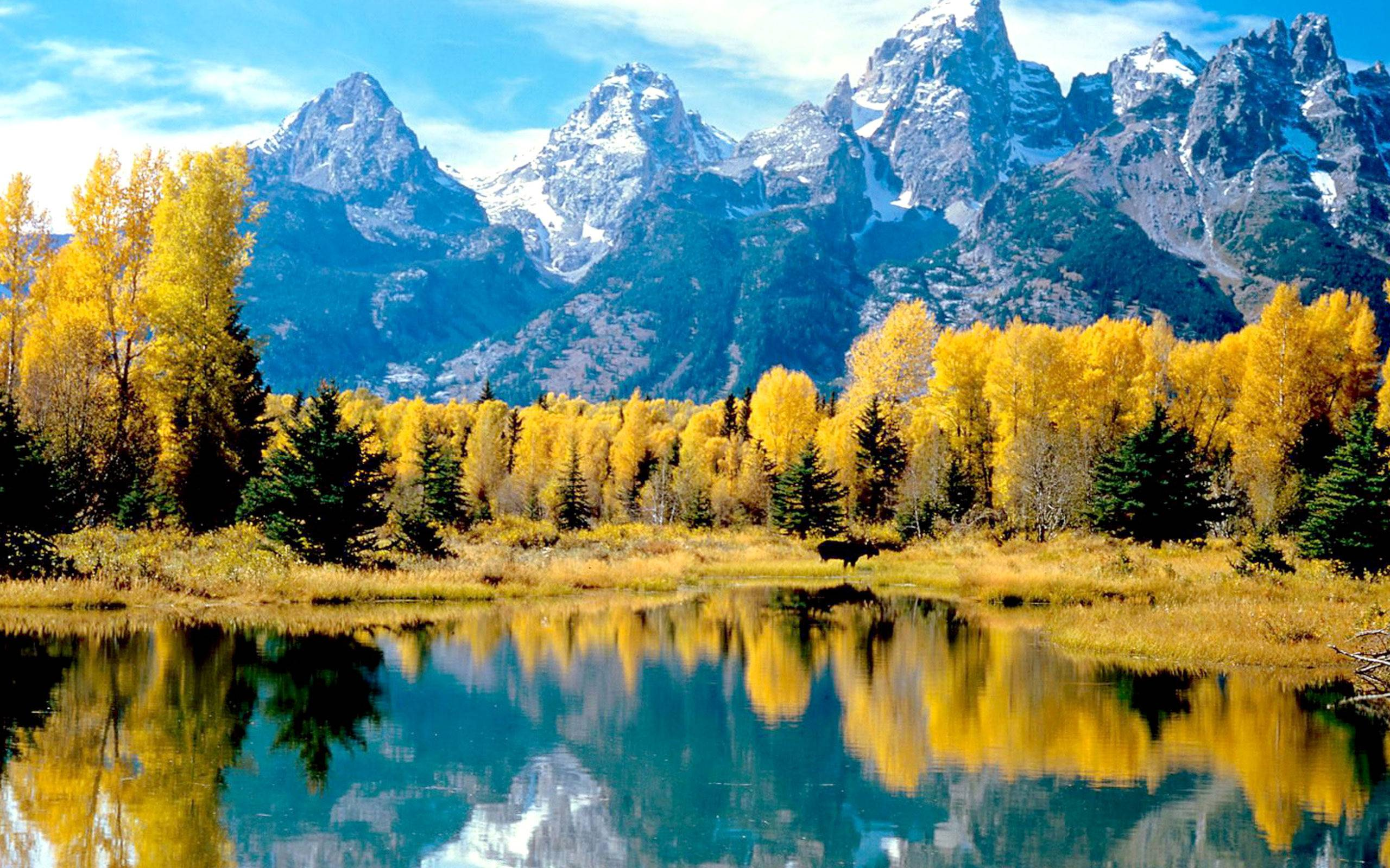 Grand Teton Wallpapers