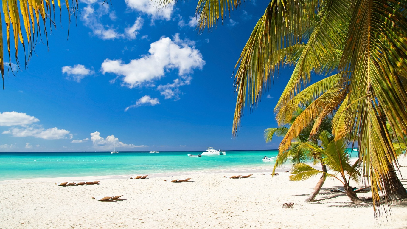 Palm Beach Wallpapers HD