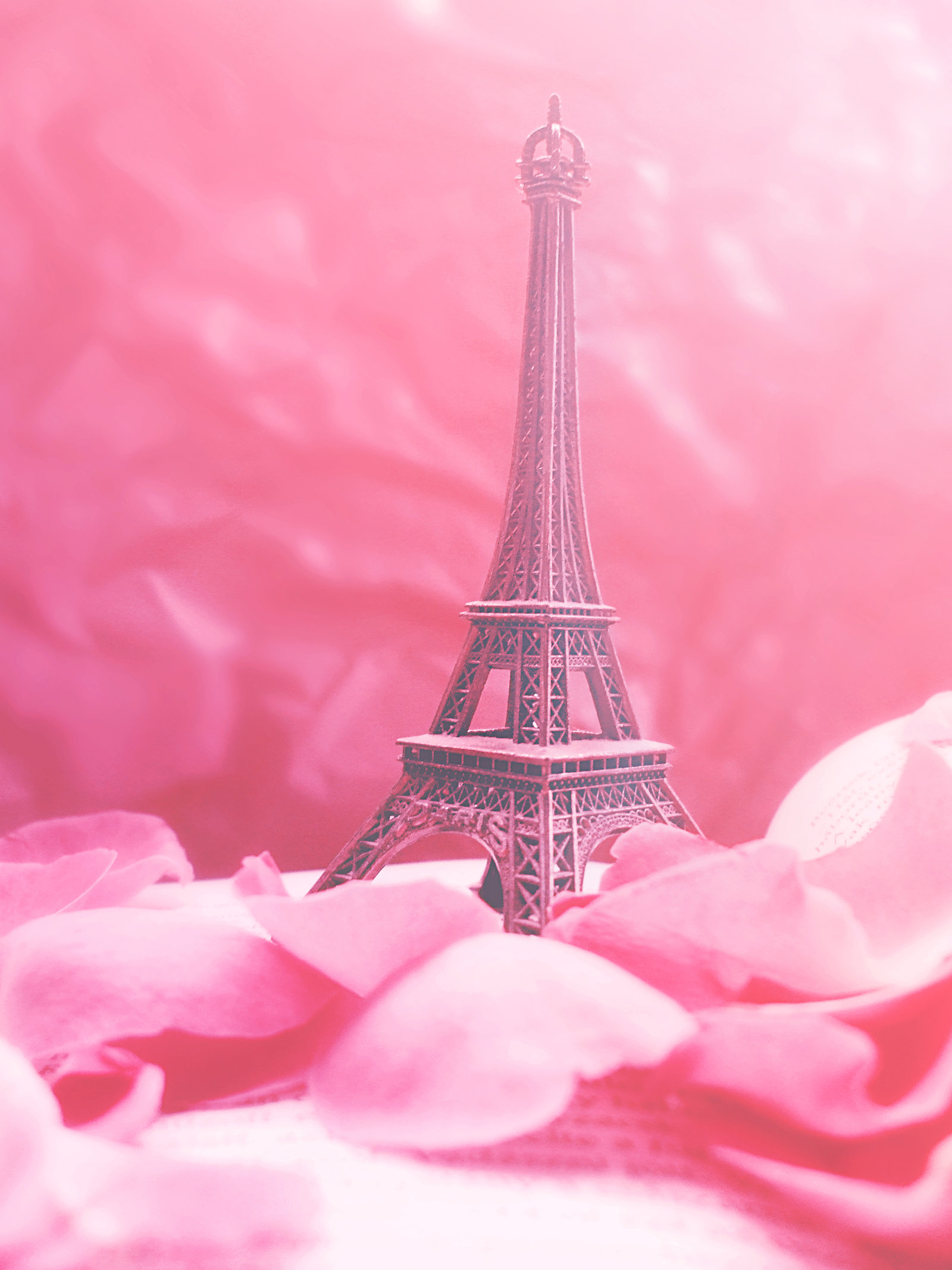 Rose Tower Wallpapers