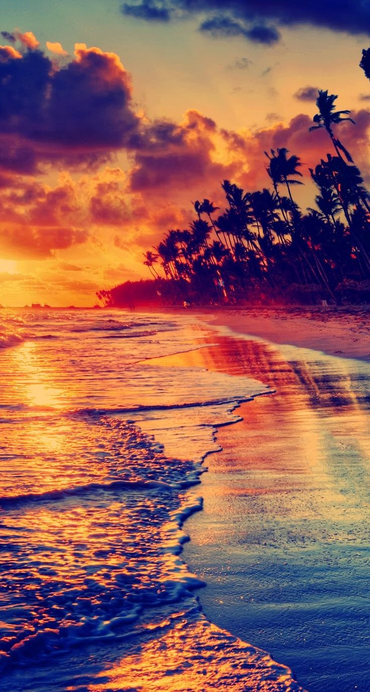 Download Scenic Phone Wallpapers Gallery