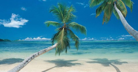 Tropical Scenes Wallpapers